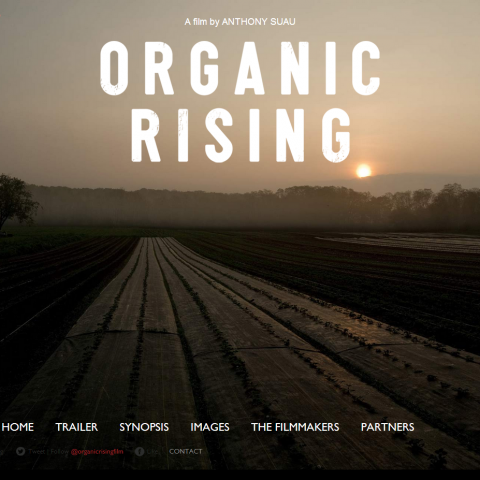 Organicrising Film